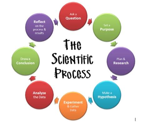The methodology of the thesis